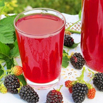 bulk boysenberry juice nfc