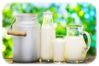 apple juice concentrate dairy applications