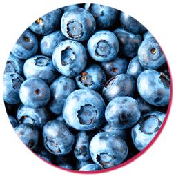 bulk natural blueberry essence
