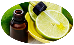 bulk cold pressed lime oil