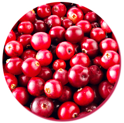 bulk natural cranberry essence