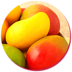 bulk natural mango essence