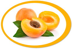 dehydrated apricots and apricot powder