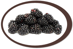 dehydrated blackberries and blackberry powder