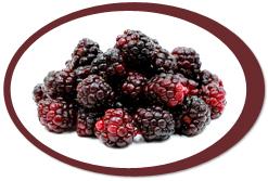 dehydrated boysenberries and boysenberry powder