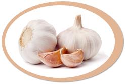 dehydrated garlics and garlic powder