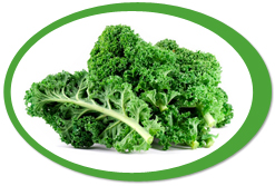dehydrated kale leaves and kale powder