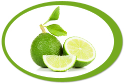 dehydrated limes and lime powder