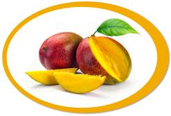 dehydrated mangoes and mango powder