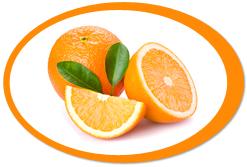 dehydrated oranges and orange powder