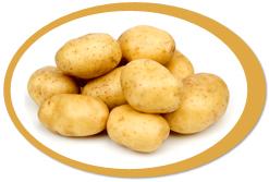 dehydrated potatoes and potato powder