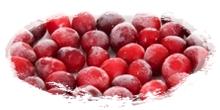 iqf frozen cranberries