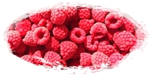 iqf frozen raspberries