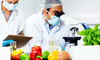 food ingredients suppliers in the united states of america