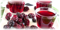 mulberry juice concentrate