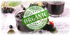 organic aronia concentrate