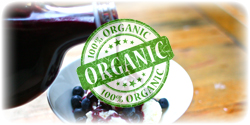 organic blueberry concentrate