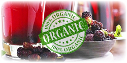 organic mulberry concentrate